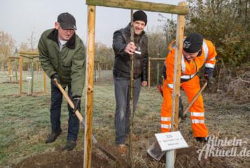 32 neue Apfelbäume im Generationenpark Rinteln