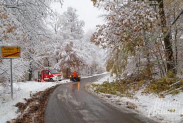 Wintereinbruch im Weserbergland: Schnee in Rinteln und Umgebung, Bäume und Äste auf den Straßen