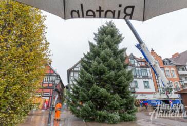 O Tannenbaum: Weihnachtstanne heute am Rintelner Marktplatz aufgestellt