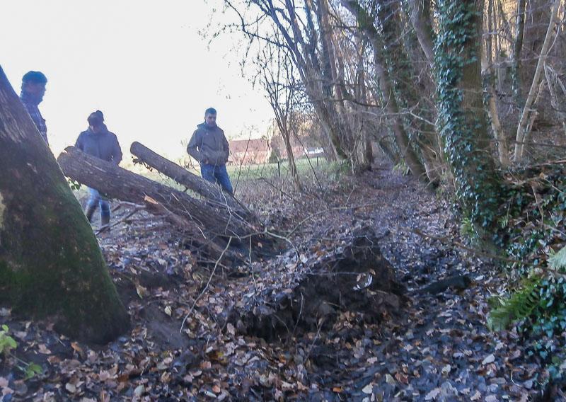01-rintelnaktuell-heimatverein-exten-totholz-eisenhammer-hammergraben-wasser-verstopfung-2