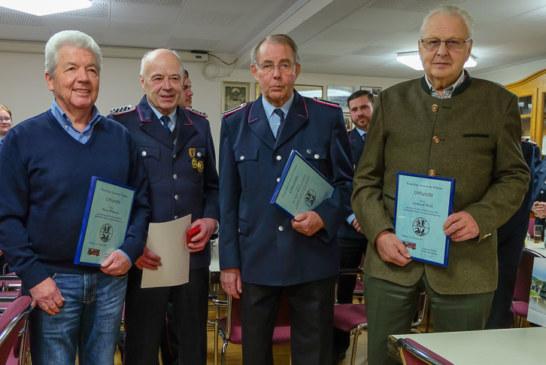 Zwölf Einsätze für Ortsfeuerwehr Volksen in 2016
