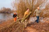Naturschützer räumen für Wasservögel auf