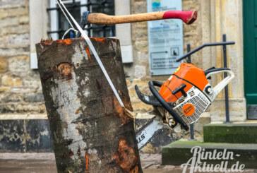"""Straße """"Blumenwall"""": Vollsperrung wegen Baumfällarbeiten"""