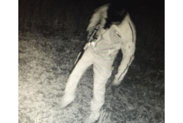 Mann mit Gewehr und Schalldämpfer im Wald unterwegs