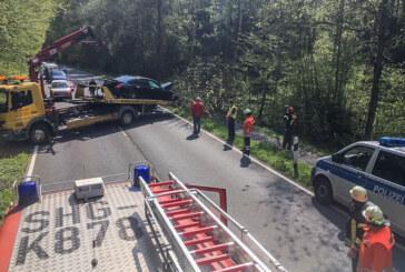 Unfall auf Extertalstraße: Tier ausgewichen – Mercedes fährt gegen Baum