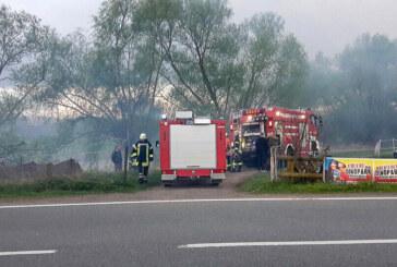 Rinteln: Funkenflug bei Osterfeuer setzt Weiden in Brand