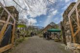 Reise in eine andere Welt: So war das Frühlingsfest im Steingarten an der Paschenburg
