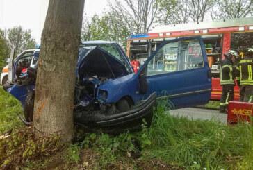 B83 zwischen Bad Eilsen und Steinbergen: PKW frontal gegen Baum geprallt