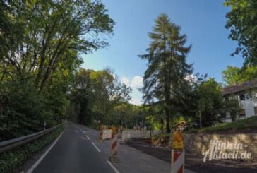 Todenmann: Auch im Juni wird noch weiter gebaut