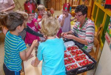 Comenius Kindergarten: Naschkatzen bei der Marmeladenherstellung