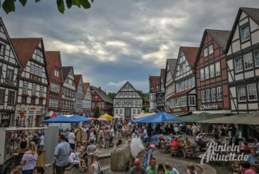 Rintelner Bauernmarkt anlässlich des Felgenfestes im Wesertal am 16. Juni