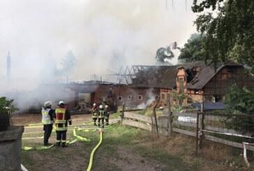 Feuerwehr-Großeinsatz in Eisbergen: Brand auf Bauernhof