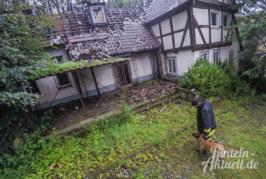Schloss Arensburg: Tierischer Einsatz für Supernasen auf vier Beinen