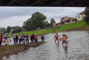 """Landschaftserlebnis der besonderen Art beim """"Weserschwimmen"""" in Rinteln"""