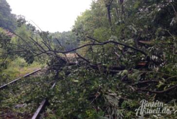 """Es wird turbulent: Sturm """"Friederike"""" ist unterwegs"""