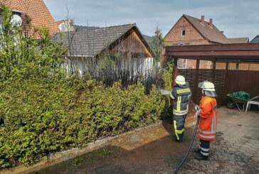 Steinbergen: Hecke bei Unkrautvernichtung in Brand geraten