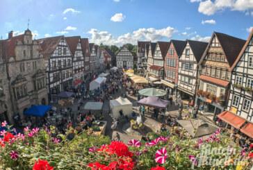 Landwirtschaft hautnah erleben: Rintelner Öko- und Bauernmarkt am 8. und 9. September