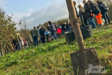 Baumpflanzaktion im Generationenpark abgesagt