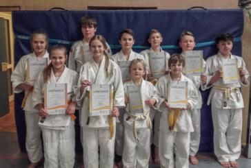 VTR startet Judo-Anfängerkurs