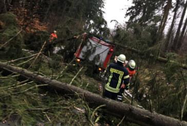 """Orkan """"Friederike"""" wütet in Rinteln: Rund 100 Einsatzstellen für Feuerwehr"""