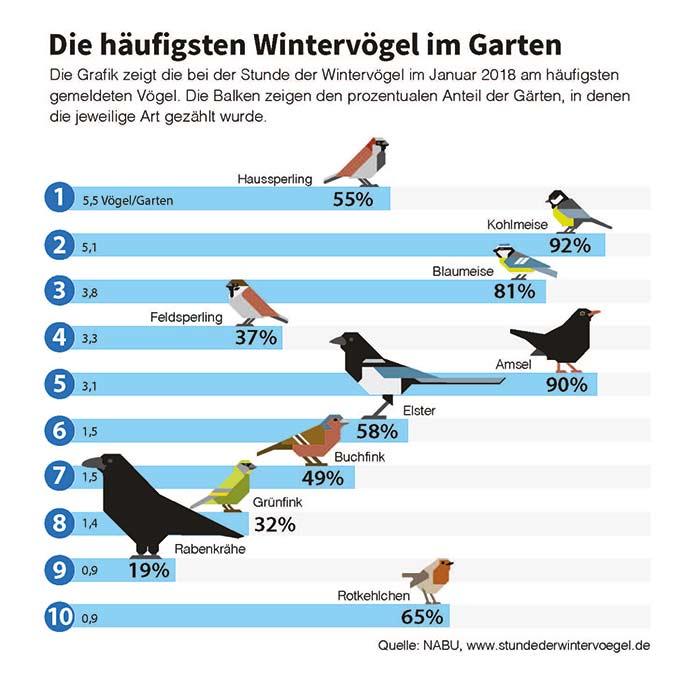 abw rtstrend bei vielen vogelarten festgestellt zugv gel verweilen h ufiger in deutschland. Black Bedroom Furniture Sets. Home Design Ideas
