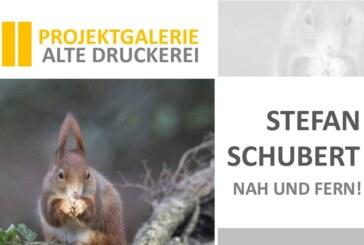 Neue Ausstellung in der Alten Druckerei: Stefan Schubert zeigt Natur aus Nah und Fern