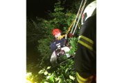 Hund in Not: Einsatz für Feuerwehren an der Paschenburg