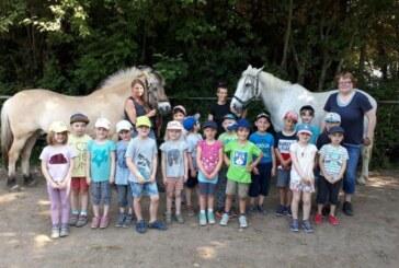 """Zukünftige Schulkinder erleben spannenden Tag auf dem """"Storchenhof"""""""
