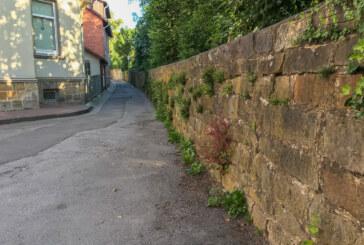 """Hinter der Mauer schlummert erhebliches """"Attraktivierungspotential"""""""