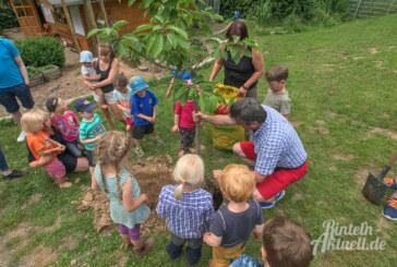 Bienen und Bäume beim Umwelt-Aktionstag im Waldkindergarten