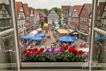 Bewährtes Erfolgsduo: Bauernmarkt in Rinteln und Felgenfest im Wesertal