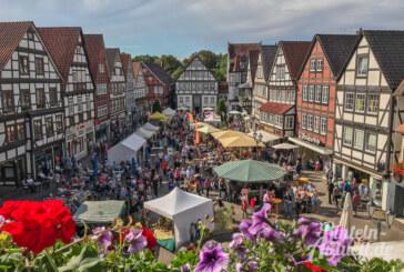 Sommerliche Stimmung beim Rintelner Öko- und Bauernmarkt im Herzen der Altstadt