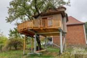 Hohenrode: Ein Traum-Baumhaus in luftiger Höhe