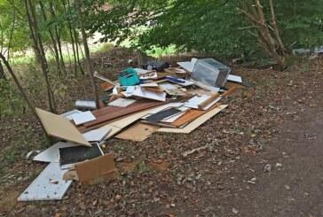 Müll im Wald abgeladen: Polizei sucht Zeugen