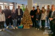 Rintelner Berufsschüler bauen Weihnachtsbäume für den guten Zweck