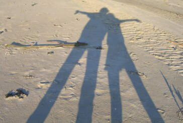 Kinderschutzbund Rinteln sucht Coaches für Kinder und Jugendliche