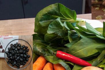 """""""Nicht ohne meine Vitamine"""": Von Magenschutzmitteln und Mikronährstoffen"""