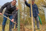 31 neue Apfelbäume am Generationenpark Rinteln gepflanzt