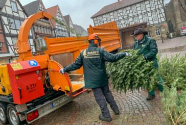 """2. Auflage von """"Grill den Häcksler"""": Mit Dieselkraft Bäume zu Holzspäne verarbeitet"""