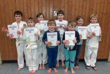 Safari, Sportabzeichen, Prüfungen und Neuanfängerkurs in der Judo-Abteilung der VT Rinteln