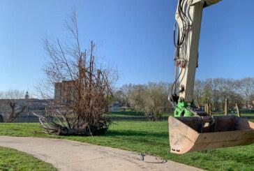 300-Kilo-Holzklotz unter Bootsanleger am Weseranger hervorgeholt