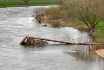 Weseranger: Bootsanleger muss von Baum befreit werden