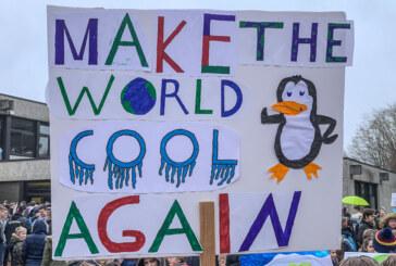 Fridays for Future: Schüler demonstrieren am 17. Mai in Rintelns Innenstadt für den Klimaschutz