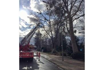 Sturmschaden: Feuerwehreinsatz in der Bahnhofstraße