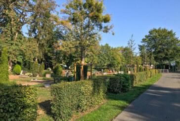 Standsicherheit von Grabmalen auf städtischen Friedhöfen wird geprüft