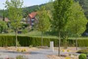 Neugestaltung des Friedhofs im Kirschendorf