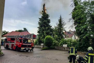 Rinteln: Baum fängt nach Blitzeinschlag Feuer