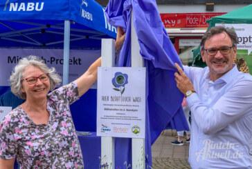 """Mitmach-Projekt """"Hier blüht Euch was!"""" startet auf dem Rintelner Bauernmarkt"""