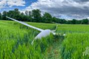 Engern: Segelflugzeug landet im Getreidefeld