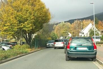Zickzack-Linien, Weseranger, Fällung, Pflanzung: Neues aus dem Ortsrat